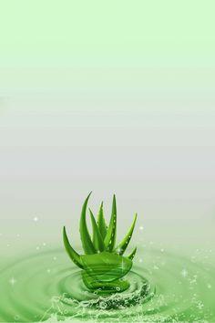 أجمل إطارات Word باللون الأخضر 4