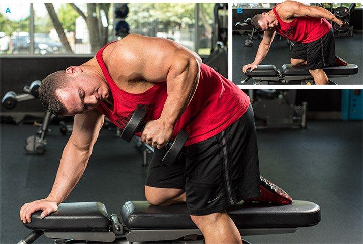 التمرين السادس: تمارين الذراعين