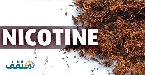 نسبة النيكوتين في جميع أنواع السجائر